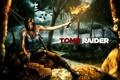 Картинка лес, девушка, арт, факел, Tomb Raider