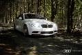 Картинка авто, лес, природа, 360 forged, белый бмв на рабочий стол, BMW M3 Convertible
