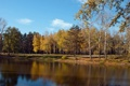 Картинка осень, лес, озеро, голубое небо, легкие облака