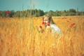 Картинка поле, лето, небо, девушка, солнце, цветы, природа