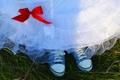 Картинка трава, кеды, платье, свадебное платье, красный бант