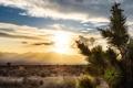 Картинка Sunset, Nevada, Desert