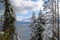 Картинка зима, природа, снег, ели