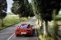 Картинка F-458 Italia, драйв, cars, ferrari, деревья, дорога, скорость