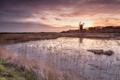 Картинка закат, озеро, мельница