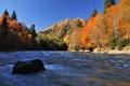 Картинка осень, лес, небо, листья, деревья, горы, река