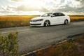 Картинка поле, Volkswagen, white, блик, front, Passat
