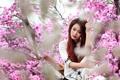 Картинка девушка, весна, азиатка