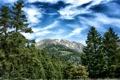 Картинка лес, небо, деревья, горы