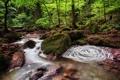 Картинка лес, ручей, Германия, Monbach Creek, Баден-Вюртемберг, река Монбах, Germany