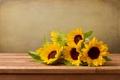 Картинка цветы, листва, подсолнух
