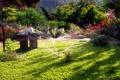 Картинка цветы, дизайн, газон, ландшафт, сад, дорожка, статуэтка