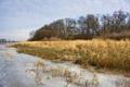 Картинка осень, природа, река, камыш