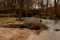 Картинка мост, парк, река, поток, каменный