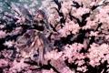 Картинка девушка, бабочки, радость, ночь, сакура, touhou, art