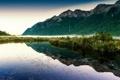 Картинка вода, туман, озеро, отражение, растения, дымка, горы.