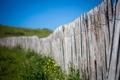 Картинка забор, Макро, macro