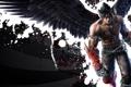 Картинка Tekken 6, Jin Kazama, Devil Jin, Art martial, Драки