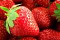 Картинка макро, земляника, клубника, ягода, листик