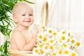 Картинка цветы, корзина, ромашки, ребёнок, улыбки, цветы жизни