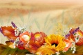 Картинка листья, коллаж, поле, осень, цветы