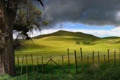 Картинка дорога, облака, природа, дерево, холмы, забор, панорама