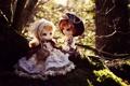 Картинка природа, девочки, игрушки, куклы, платья, головные уборы