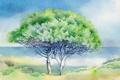Картинка пейзаж, дерево, картина, акварель