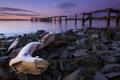Картинка закат, пейзаж, река, Scotland, Aberdour