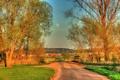 Картинка деревья, город, дороги, HDR, Германия, Hungen