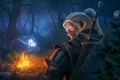 Картинка лес, ночь, костер, rpg, witcher, The Witcher 3: Wild Hunt, Wild Hunt