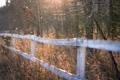 Картинка осень, трава, природа, забор