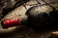 Картинка стекло, макро, вино, бутылка, урожай, виноград, пробка