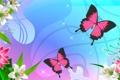 Картинка природа, мотылек, вектор, бабочка, цветы