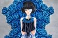 Картинка девушка, фон, череп, розы, арт, повязка, синие