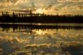 Картинка лес, небо, вода, солнце, облака, лучи, деревья