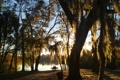 Картинка осень, небо, вода, закат, скамейка, парк, дерево