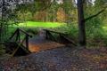 Картинка поле, осень, лес, листья, деревья, мост, мостик