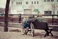 Картинка велосипед, город, отражение, одежда, скамейки, боке, корзины