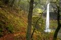 Картинка осень, листья, деревья, скала, водопад, мох, США