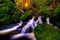 Картинка мох, лучи солнца, деревья, обработка, водопад, лес, зелень
