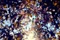 Картинка листья, цвета, свет, цветы, Солнце, by mike pro