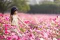 Картинка цветы, настроение, лето, девочка