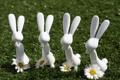 Картинка ромашки, зайцы, фигуры