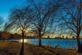 Картинка деревья, город, река