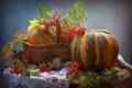 Картинка осень, тыква, натюрморт, овощи, рябина, фигурка, мышонок