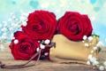 Картинка розы, бутоны, гипсофила