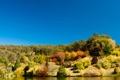 Картинка река, растительность, Австралия