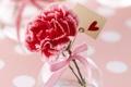 Картинка цветок, сердечко, гвоздика, поздравление, тесьма