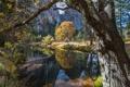 Картинка осень, деревья, горы, озеро